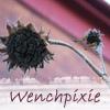 wenchpixie: (dreamwidth)