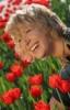 kislaya: (тюльпаны)