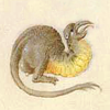 quillori: a small, cute, imaginary creature from a psalter (stock: cute critter, subject: cute critter, mood: cute)