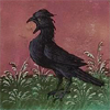 quillori: drawing of a bird squawking (stock: squawking, mood: laying off)