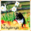 kisyanya: (cat that watching)
