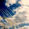 monanotlisa: (spring sky)