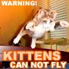 jebbypal: (kittens fly)