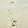 allangtegek: footsteps on the beach (voetstappen)