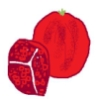 pomegranate02: hand-drawn pomegranate (Default)