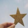 delight: (gold star)