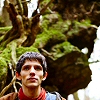 feywood: Merlin in the woods ((Merlin) big world)