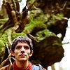 feywood: Merlin in the woods ((Marvin) So depressed)