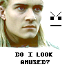 merry_gentry: From 'LotR' (Legolas is not amused by your fuckery)