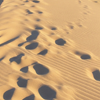 avaragarda: Footprints trailing away in sand dune in the Sutherland Shire, Australia (pass before my eyes a curiosity)
