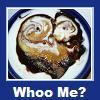 seryn: bowl of yogurt w/owl drawn in chocolate (whoo, food2, owl)