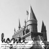pretty_panther: (hp: home is hogwarts)
