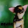bookworm221b: mojito bobble head (Mojito)