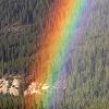alexconall: rainbow (rainbow)