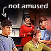 logovo: No, Mr. Spock is certainly not amused. (ST: TOS.- Not amused)