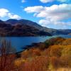 thady: (DIV  -  Scotland)