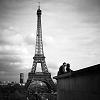 austin4564: (paris)