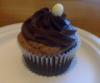 zirconium: photo of cupcake from Sweet 16th, Nashville (crackacino cupcake)