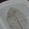 jolantru: (book)