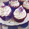 ext_15510: (cupcake)