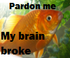 breezeshadow: BRAIN PROBLEMS ICON (BrokenBrainGoldfish)