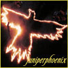 juniperphoenix: Fire in the shape of a bird (Amor Fati)