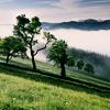 brisus: (Seasons - Green Hillside)