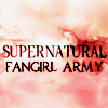 gigglingkat: We accidentally started a holy war with PDiddy. (fangrrrls: Supernatural Fangirl Army)