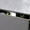 cesia: (boxcat is watching you)