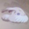 radiantwingedone: ([bunwigle] Yup. A bunwigle)