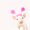 cupidsbow: (misc - piggy)