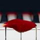 irritus: (piano)