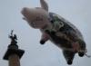 akvalang58: (Свинья над Россией)