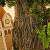 carizzo08: (city hall)