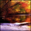 xtina: Autumnal trees overlooking a river. (changes, autumn)