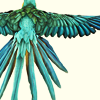 birdspiritland: (flying, parrot)