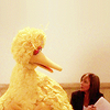 "horchata: Picture of CJ Cregg from ""The West Wing"" sitting next to Big Bird. (CJ and Big Bird are cooler than you)"
