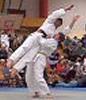 sirmal: (judo)