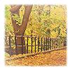 billysgirl5: (Autumn)