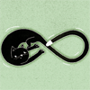 pyewackit: A black cat curled up to make the shape of the infinity symbol. (infinity)