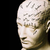 st_aurafina: A ceramic head marked with phrenology detail  (Brain: Phrenology)