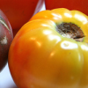 genuphobia: photo of an heirloom tomato (heirloom tomatoes)