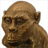 halialkers: Ape-like face in bust form (Redmane)
