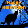lady_yashka: A black cat and the words Happy Halloween in orange. (Halloween)