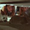 sarahcb1208: (plot bunnies)