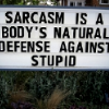 spacer: Sarcasm is a body's natural defense against STUPID (sarcasm)