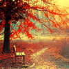 autumndays: (autumn)