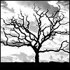 omnia_mutantur: (trees)