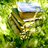 hark: In the sunshine, a pile of old books, half hidden by the grass (books grass) (Default)