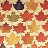 halfpastautumn: (Autumn Leaves.)